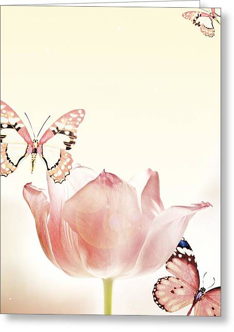 Space Flower Greeting Cards - Butterflies And Tulips Greeting Card by Chris Knorr