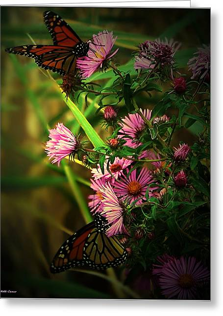 Mikki Cucuzzo Greeting Cards - Butterflies and wildflowers Greeting Card by Mikki Cucuzzo