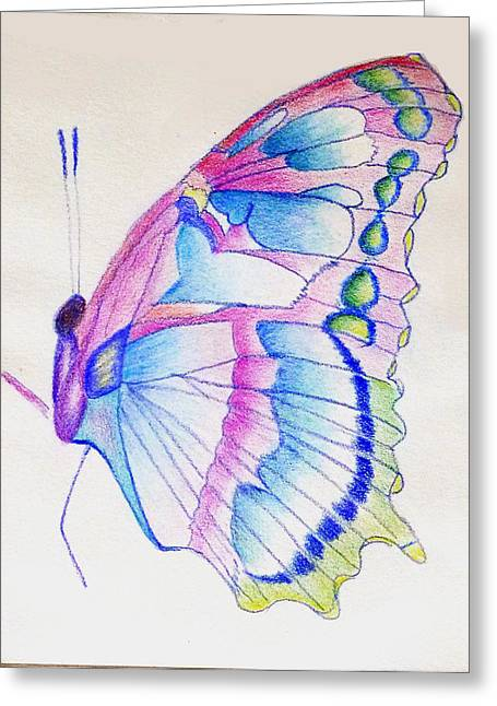 Linda Pope Greeting Cards - Butterflly Print Greeting Card by Linda Pope