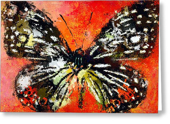 Butterfly 3 Greeting Card by Yury Malkov