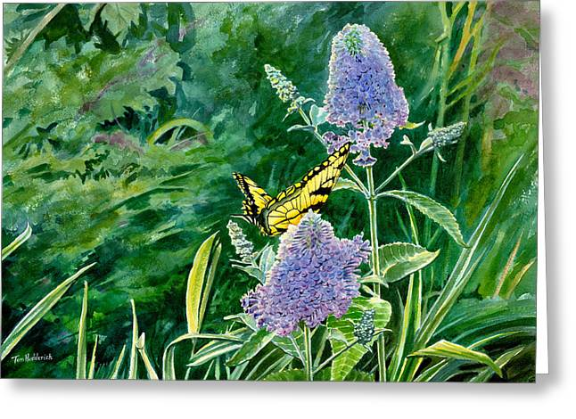 Watercolor. Butterfly Greeting Cards - Butterfly Bush Greeting Card by Tom Hedderich