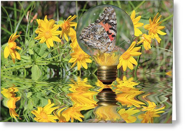 Glass Floats Greeting Cards - Butterfly In A Bulb II - Landscape Greeting Card by Shane Bechler