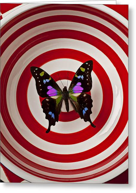 Round Shape Greeting Cards - Butterfly in circle bowl Greeting Card by Garry Gay