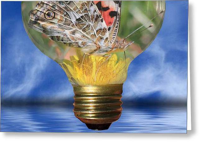 Butterfly In Lightbulb Greeting Card by Shane Bechler