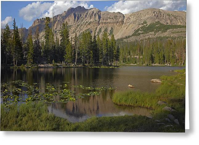 Utah Weather Greeting Cards - Butterfly Lake Uinta Range Utah Greeting Card by Tim Fitzharris