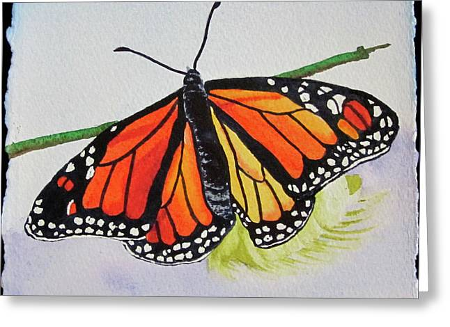 Butterfly Greeting Card by Teresa Beyer