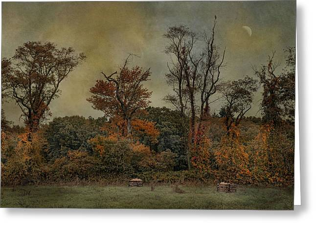 Harvest Moon Greeting Cards - Butternut Field Greeting Card by Robin-lee Vieira