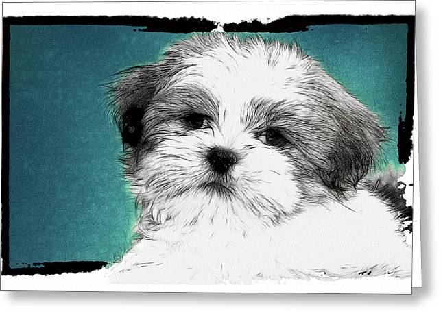 Puppies Digital Art Greeting Cards - Button Nose Greeting Card by Tilly Williams