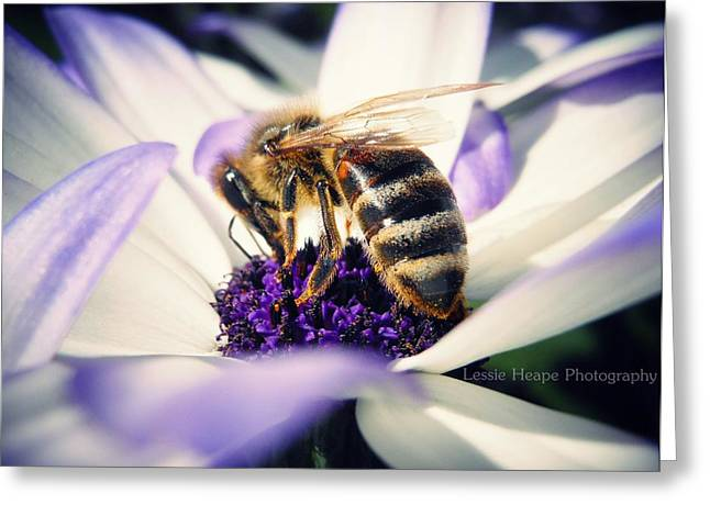 Buzz Wee Bees Greeting Card by Lessie Heape