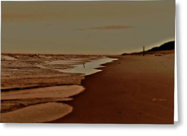 Lamdscape Greeting Cards - BW Beach Hoffmaster Greeting Card by Ritter Photography And Fine Art Images