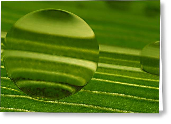 C Ribet Orbscapes Green Jupiter Greeting Card by C Ribet