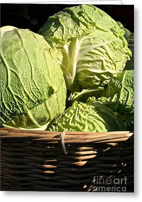 Minnesota Grown Photographs Greeting Cards - Cabbage Heads Greeting Card by Susan Herber