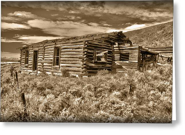 Cabin Fever Greeting Card by Shane Bechler