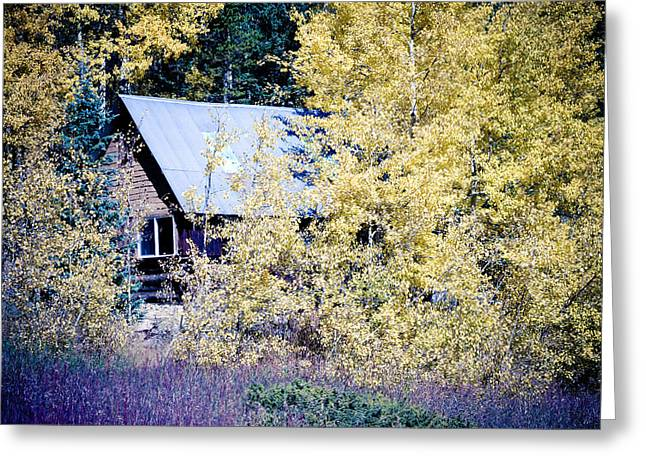 Cabin Wall Greeting Cards - Cabin Hideaway Greeting Card by James BO  Insogna
