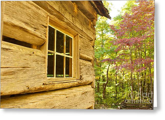 Mountain Cabin Greeting Cards - Cabin View Greeting Card by Lena Auxier