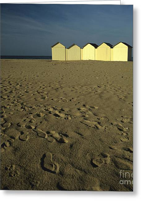Cabins On A Beach In Normandy Greeting Card by Bernard Jaubert