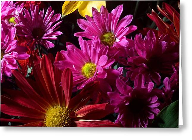 Bouquet Photographs Greeting Cards - Cacophony of Color Greeting Card by Joe Kozlowski