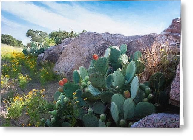 Llano Greeting Cards - Cactus and Granite    9234 Greeting Card by Fritz Ozuna