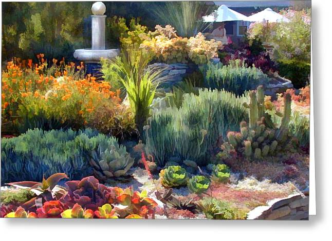 Cactus Garden And Fountain Greeting Card by Elaine Plesser