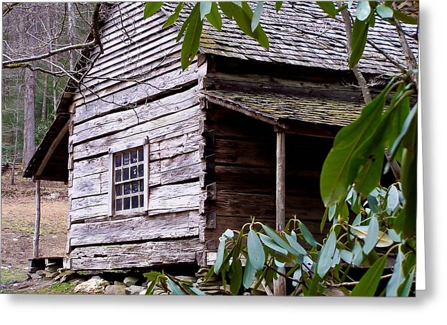 Tennessee Historic Site Greeting Cards - Cades Cove Cabin Greeting Card by Jim Finch