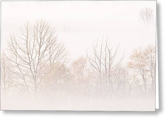 Peaceful Scene Greeting Cards - Cades Cove Fog - Square Version Greeting Card by Bill Swindaman