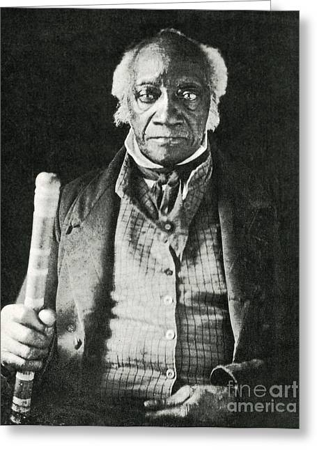Black Man Greeting Cards - Caesar, Last Slave In New York Greeting Card by Photo Researchers