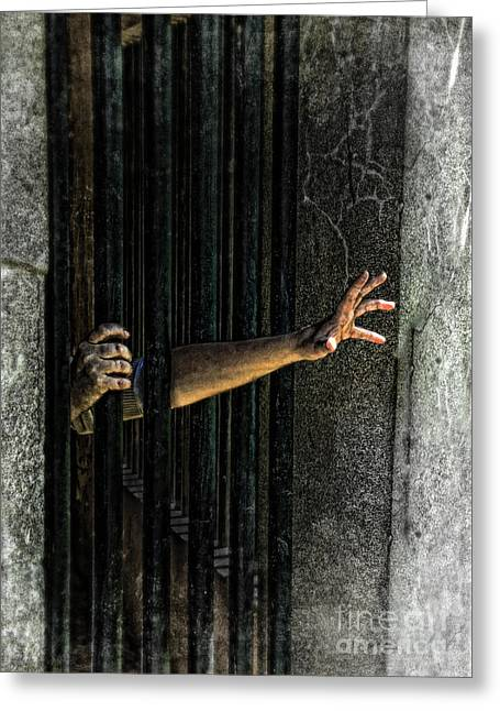 Locked Out Greeting Cards - Caged 3 Greeting Card by Jill Battaglia