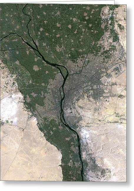 River Nile Greeting Cards - Cairo Greeting Card by Planetobserver