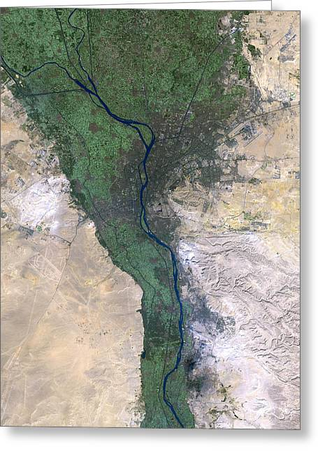 Floodplain Greeting Cards - Cairo, Satellite Image Greeting Card by Planetobserver