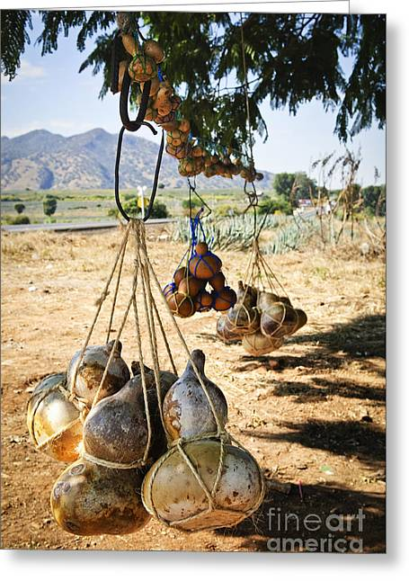 Canteen Greeting Card featuring the photograph Calabash Gourd Bottles In Mexico by Elena Elisseeva
