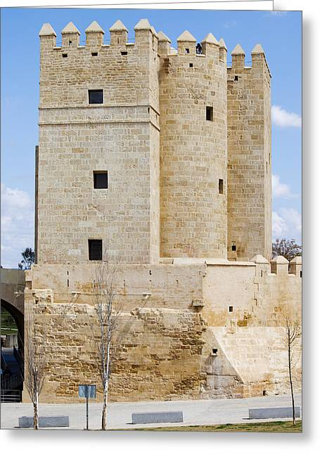 Cordoba Greeting Cards - Calahorra Tower in Cordoba Greeting Card by Artur Bogacki