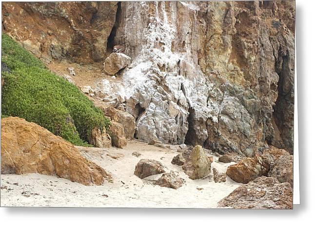 York Beach Greeting Cards - Calcium Deposits 1 Point Dume - Zuma Beach CA  Greeting Card by Filippo Ioco