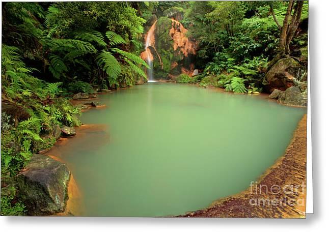 Natural Pool Greeting Cards - Caldeira Velha - Azores Greeting Card by Gaspar Avila