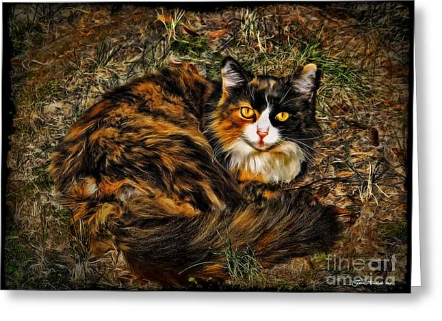 Kitty Kat Greeting Cards - Calico Cat Greeting Card by Joan  Minchak