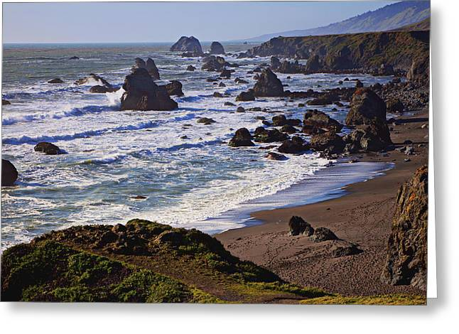 Maritime Greeting Cards - California coast Sonoma Greeting Card by Garry Gay