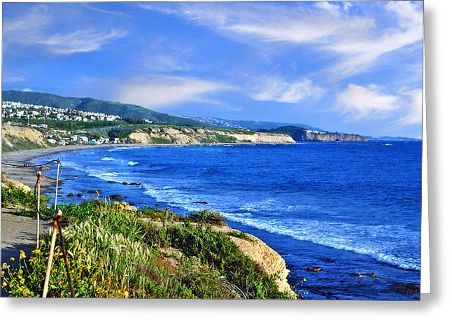 California Beach Art Greeting Cards - California coastal Greeting Card by Anthony Citro