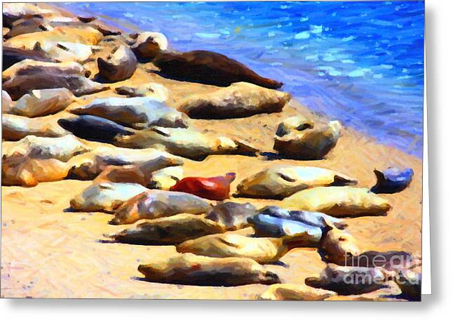 Sea Lions Digital Art Greeting Cards - California Sunbathers . Harbor Seals Greeting Card by Wingsdomain Art and Photography