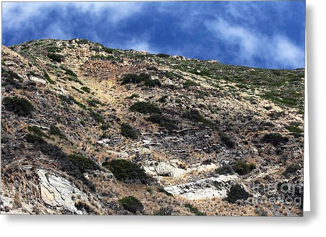 California Contemporary Gallery Greeting Cards - California Terrain Greeting Card by John Rizzuto