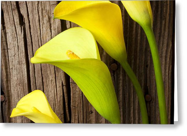 Calla lilies against wooden wall Greeting Card by Garry Gay
