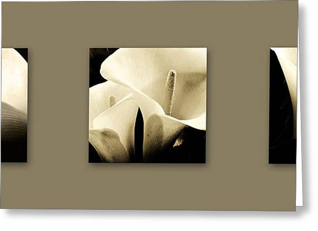 Chic Greeting Cards - Calla Lilies art Greeting Card by Sumit Mehndiratta
