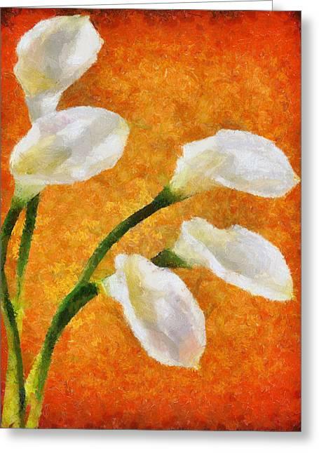 Calla Lily Greeting Cards - Calla Lily I Greeting Card by Jai Johnson