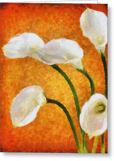 Calla Lily Greeting Cards - Calla Lily II Greeting Card by Jai Johnson
