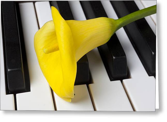 Calla Lily On Keyboard Greeting Card by Garry Gay