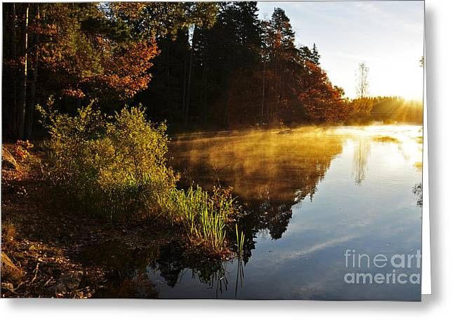 Peaceful Scenery Greeting Cards - Calm lake Greeting Card by Conny Sjostrom