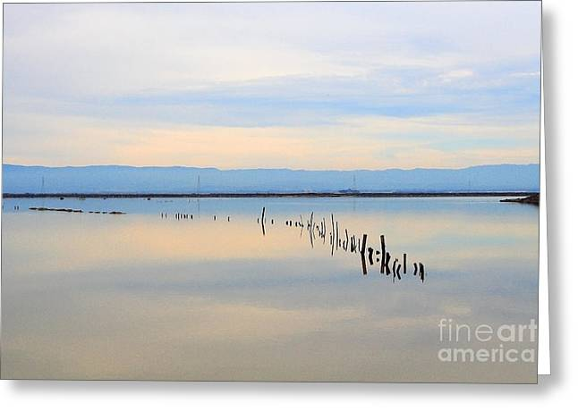 Wildlife Refuge. Greeting Cards - Calm Morning Waters Greeting Card by Wingsdomain Art and Photography