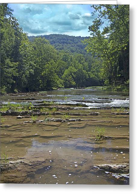 Calm On The Creek Greeting Card by Betsy Knapp