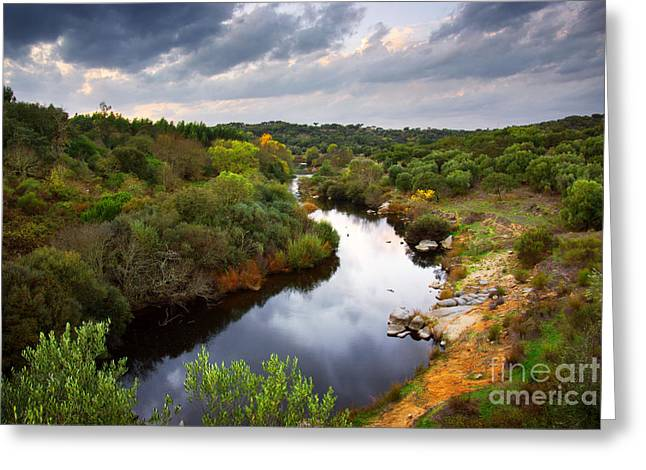 Spring Scenes Greeting Cards - Calm River Greeting Card by Carlos Caetano