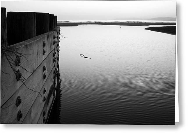 Calm Water in Cambria Greeting Card by Matt Hanson