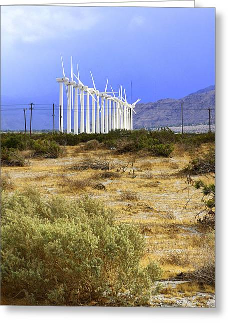 Purple Mountains Prints Greeting Cards - CALM WIND Palm Springs Greeting Card by William Dey