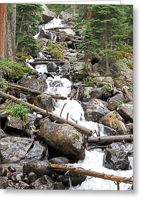 David Yunker Greeting Cards - Calypso Cascades Greeting Card by David Yunker